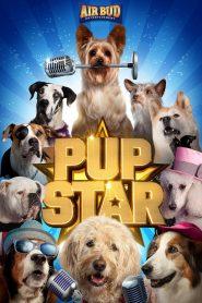 Pup Star
