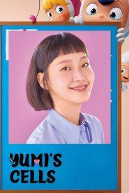 Yumi's Cells: Season 1